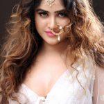 Sony Charishta Glamour Stills