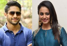 Naga Chaitanya and Rakul Preet Singh to team up again for lady director