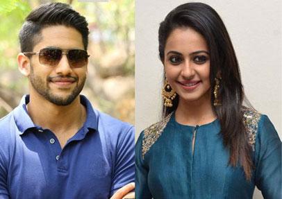 Naga Chaitanya and Rakul Preet Singh to team up again for lady director