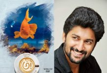 Natural star Nani's Awe crosses half million mark in US