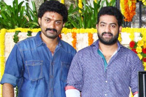 Official: Young Tiger Jr NTR to Campaign for MLA