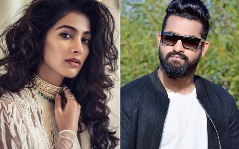 Pooja Hegde scared of Young Tiger Jr.NTR?