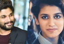What is cooking between Stylish Star Allu Arjun and Wink girl Priya Prakash Varrier