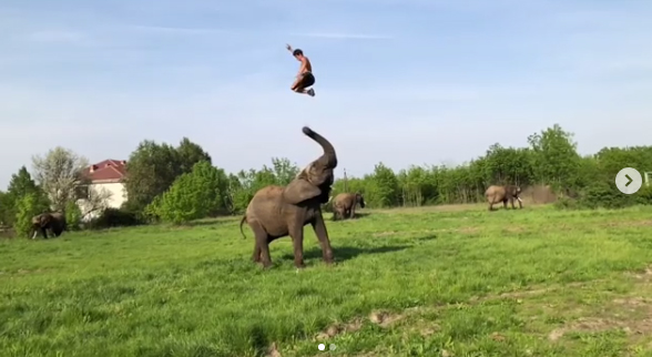Rene Kaselowsky performs Baahubali Prabhas elephant stunt! Video Viral