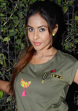 Sri Reddy's comments on Telugu NRIs who protested for AP Special Status in Dallas