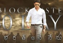 Bharat Ane Nenu 50 days collections