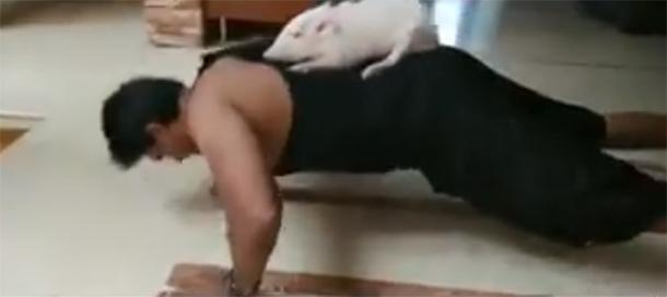 Ravi Babu fitness Challenge with Piglet