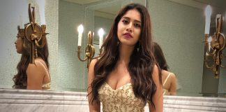 Nabha Natesh New Photos (1)