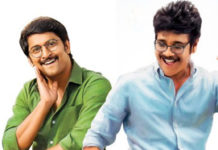 Devadas 12 Days Collections