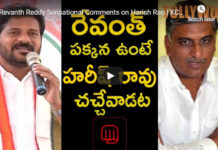 Revanth Reddy Sensational Comments on Harish Rao