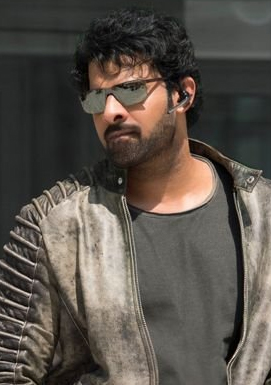 Saaho Climax : Hand to hand Mortal Combat