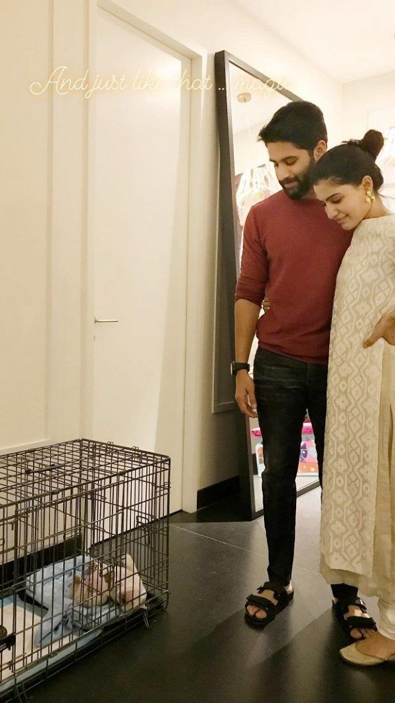 Samantha, Naga Chaitanya become Parents