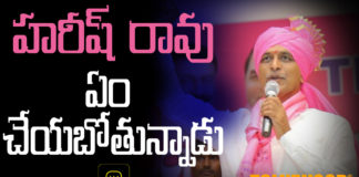 What' s the meaning of Harish rao silence