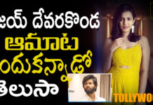 Vijay deverakonda comments goes viral