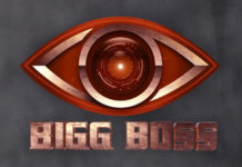 These are 5 Contestants of Bigg Boss 3 Telugu?