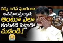 Chandrababu Gets Very Emotional About His Loss In Elections