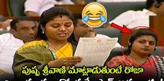 MLA Roja Shocks When Pushpa Srivani Speech At Assembly Session