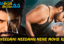 Ninu Veedani Needanu Nene Review