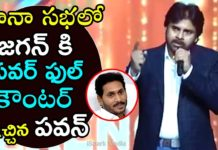 Pawan Kalyan Powerful Counter to YS Jagan
