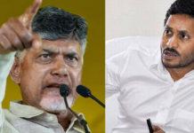 "Jagan's terrorism: Chandra Babu calls for ""Chalo Palnadu"" campaign"