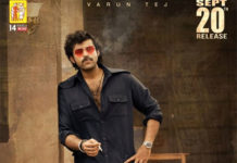 Valmiki Worldwide Pre Release Business
