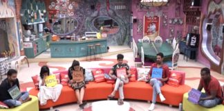 Bigg Boss 3 Telugu: Who will win ticket to Finale?