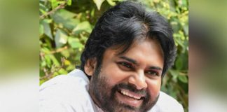 Director locked for Pawan Kalyan Pink Remake