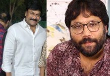 Sandeep Reddy Vanga story for Chiranjeevi