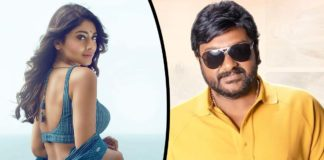 Bikini beauty  to romance Vinayak in Seenayya
