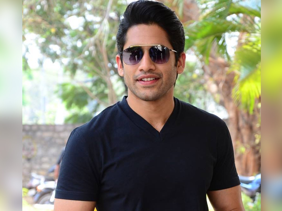 This Fanism only for Naga Chaitanya