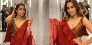 Anita Hassanandani grants permission to watchman to click glam pics