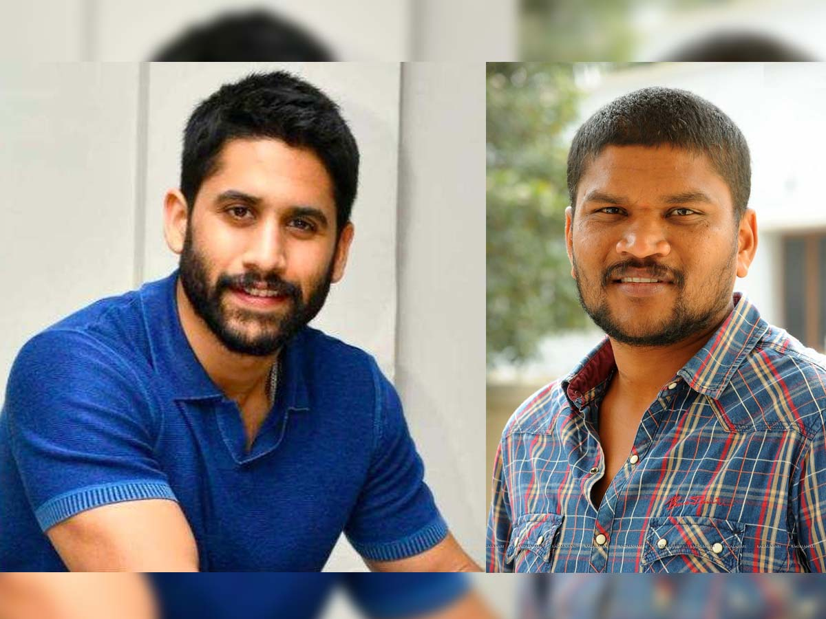 Naga Chaitanya Parasuram team up