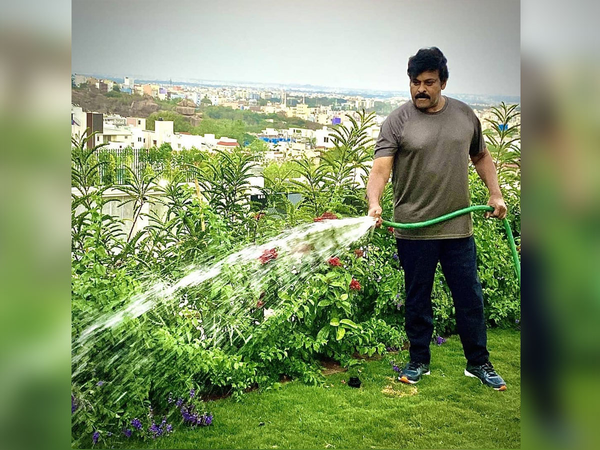 Chiranjeevi reveals his morning duty on Instagram