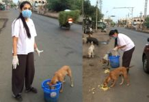 Novel gesture from Rashmi Gatham, feeding street dogs