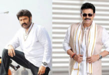 After Venkatesh, Next Balakrishna