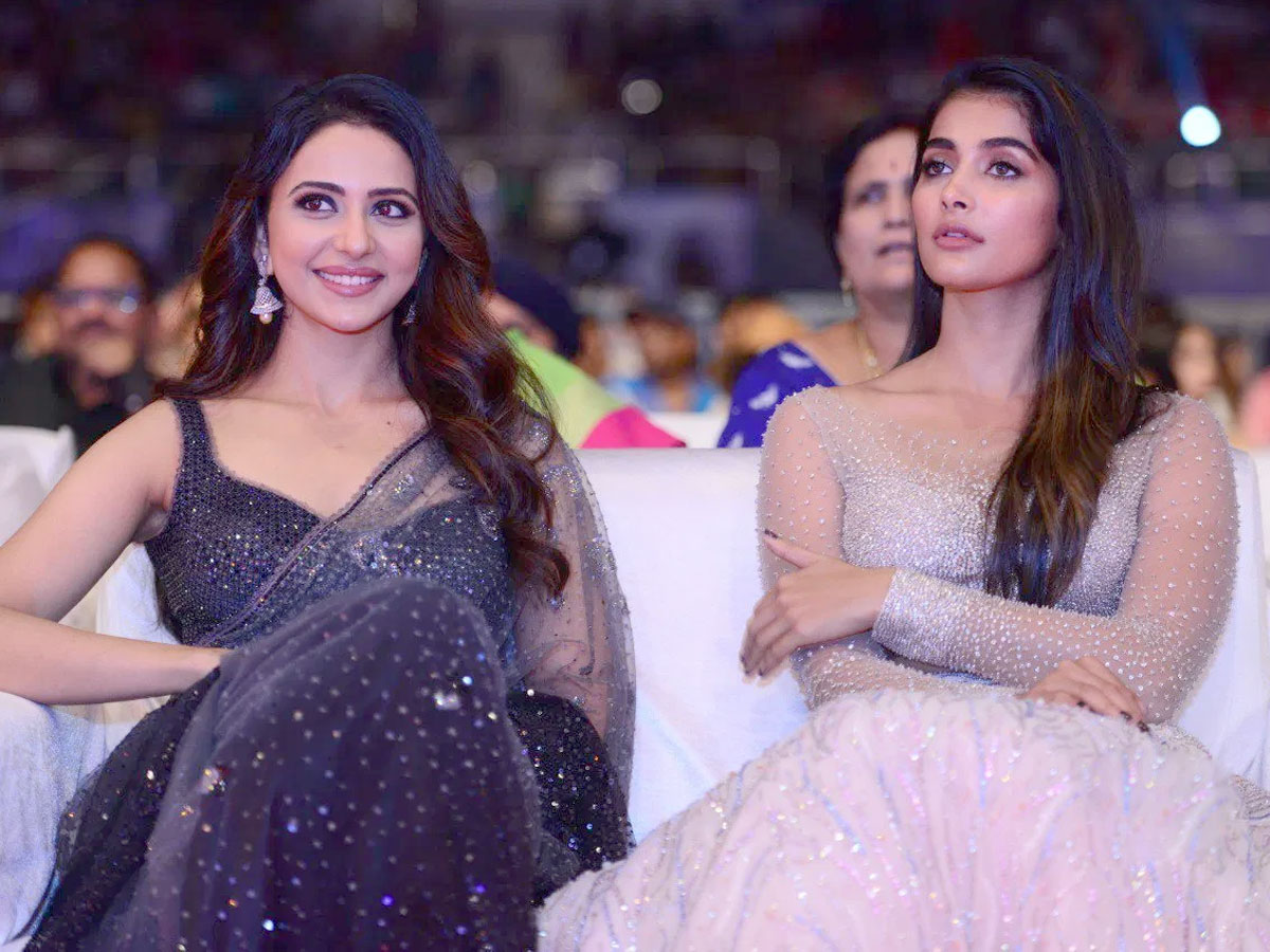 Pooja Hegde satire on Rakul Preet