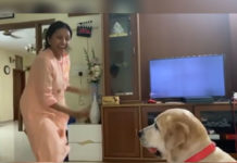 Anchor Suma pet dog is mad at her! Reason Ramuloo Ramulaa