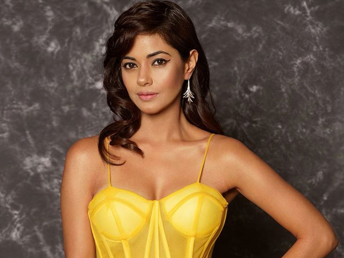 Jr NTR fans calls Meera Chopra a B*tch and P*rn star