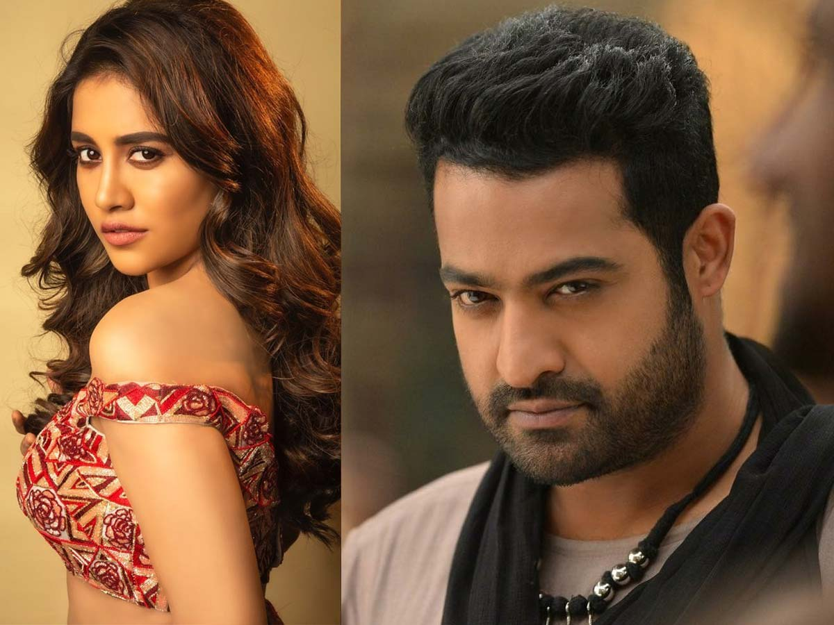 Jr NTR wants naughty Nabha Natesh