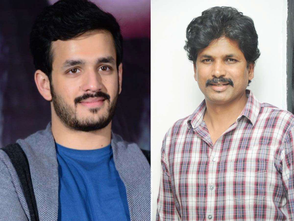 Akhil Akkineni teaming up with Veeru Potla?