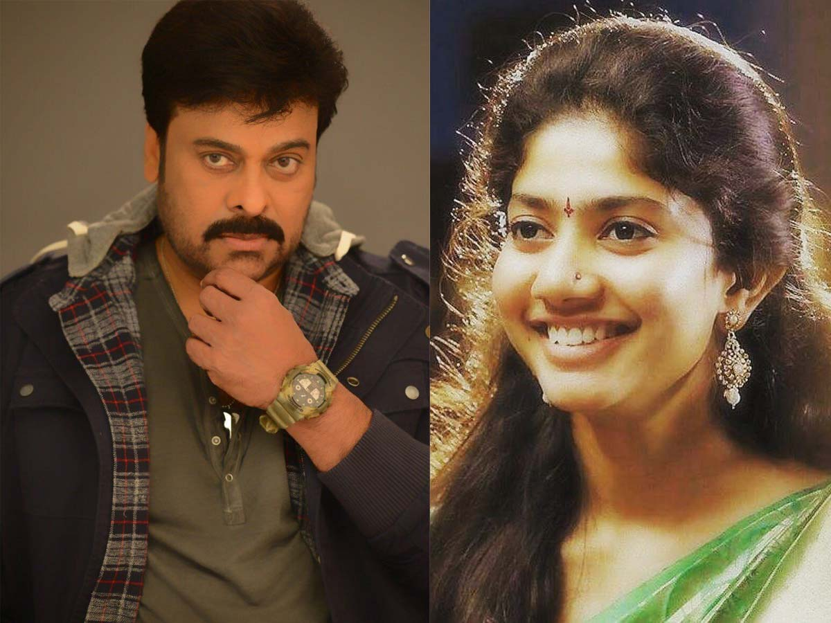 Sai Pallavi has art of seizing people attention but she rejects Chiranjeevi offer