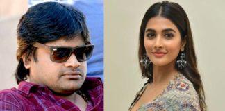 Harish Shankar decides to repeat his heroine Pooja Hegde for Pawan Kalyan