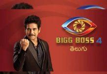 Love affairs blooming inside Bigg Boss 4 Telugu house