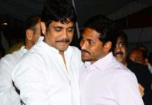 Nagarjuna to play Chief Minister in his next?