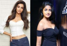 Meenakshi Chowdary and Dimple Hayathi in Ravi Teja film?