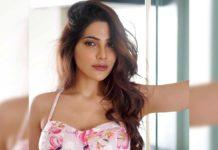 Telugu beauty Nikki Tamboli enters Bigg Boss house