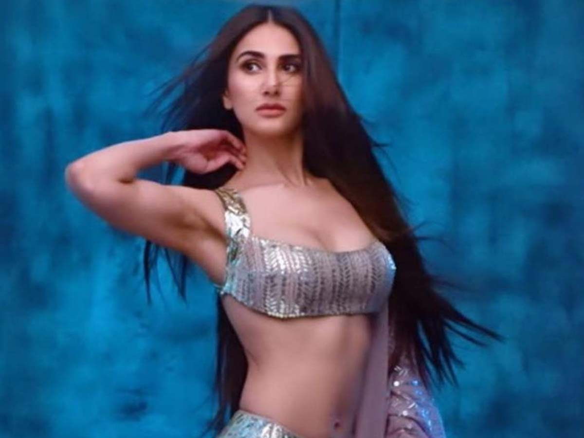 Vaani Kapoor to play a transgender?