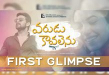 Varudu Kavalenu First Glimpse:  Just Above Awesome