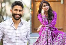 Naga Chaitanya gets Akhil heroine to romance