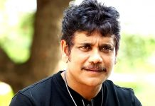 Nagarjuna - A Chief Security Officer on a mission